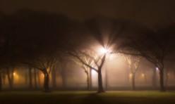 Fahrt durch die Nacht Induktion