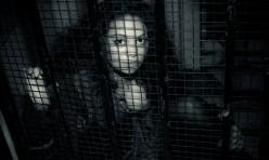 (P) Magic Cage
